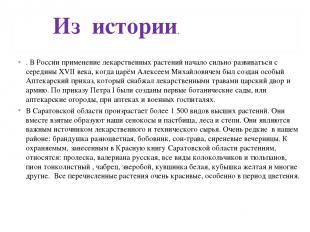 . В России применение лекарственных растений начало сильно развиваться с середин