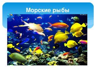 Морские рыбы