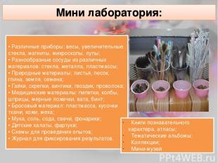 Мини лаборатория: • Различные приборы: весы, увеличительные стекла, магниты, мик