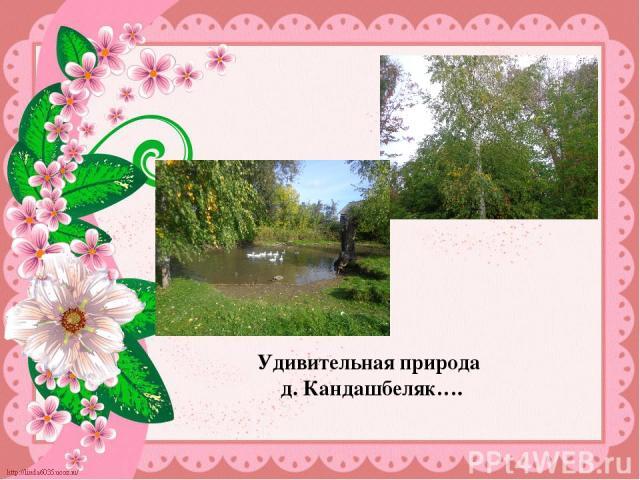 Удивительная природа д. Кандашбеляк…. Чудесная природа в д. Кандашбеляк….
