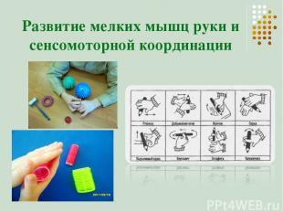 Развитие мелких мышц руки и сенсомоторной координации
