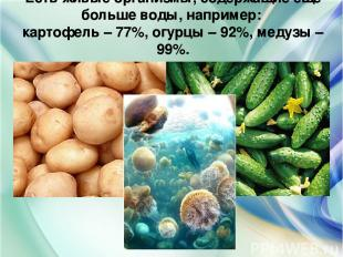 Есть живые организмы, содержащие ещё больше воды, например: картофель – 77%, огу