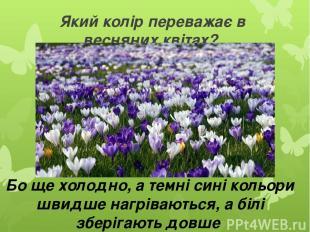 Який колір переважає в весняних квітах? Бо ще холодно, а темні сині кольори швид