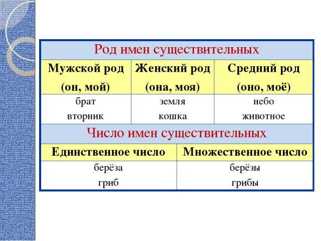 Род имен существительных Мужской род (он, мой) Женский род (она, моя) Средний род (оно, моё) брат вторник земля кошка небо животное Число имен существительных Единственное число Множественное число берёза гриб берёзы грибы
