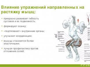 Влияние упражнений направленных на растяжку мышц: прекрасно развивает гибкость с