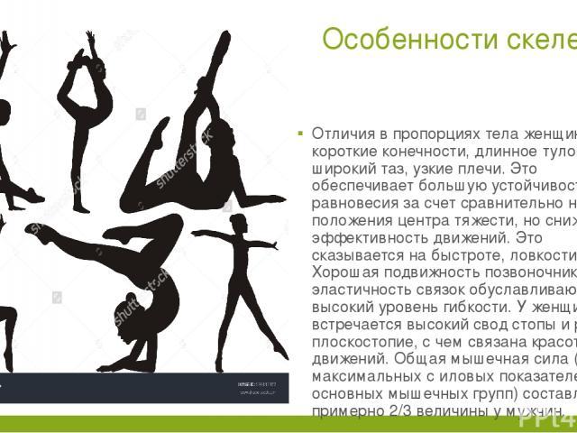 Особенности скелета. Отличия в пропорциях тела женщин: короткие конечности, длинное туловище, широкий таз, узкие плечи. Это обеспечивает большую устойчивость равновесия за счет сравнительно низкого положения центра тяжести, но снижает эффективность …