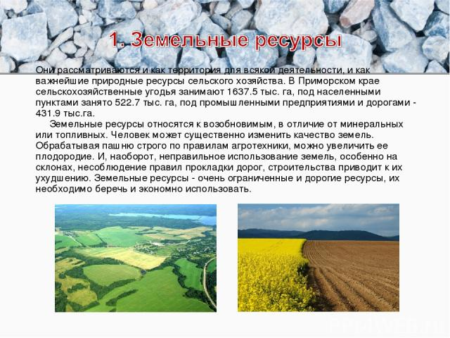 Они рассматриваются и как территория для всякой деятельности, и как важнейшие природные ресурсы сельского хозяйства. В Приморском крае сельскохозяйственные угодья занимают 1637.5 тыс. га, под населенными пунктами занято 522.7 тыс. га, под промышленн…
