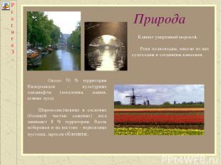 Природа Около 70 % территории Нидерландов - культурные ландшафты (поселения, паш