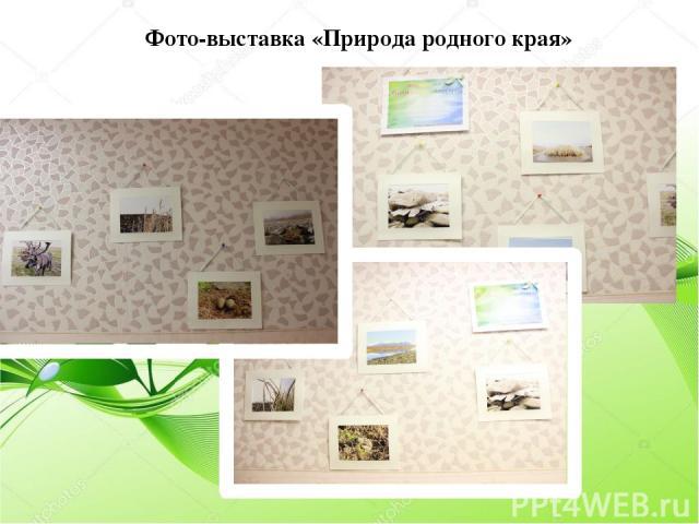 Фото-выставка «Природа родного края»