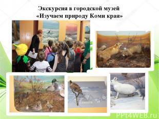 Экскурсия в городской музей «Изучаем природу Коми края»