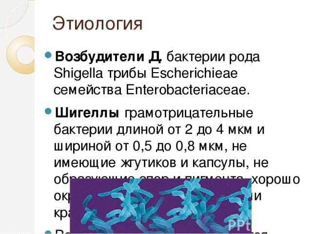 Этиология Возбудители Д. бактерии рода Shigella трибы Escherichieae семейства Enterobacteriaceae. Шигеллы грамотрицательные бактерии длиной от 2 до 4 мкм и шириной от 0,5 до 0,8 мкм, не имеющие жгутиков и капсулы, не образующие спор и пигмента, хоро…