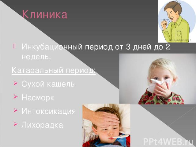 Клиника Инкубационный период от 3 дней до 2 недель. Катаральный период: Сухой кашель Насморк Интоксикация Лихорадка