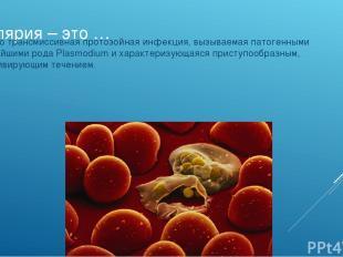 Малярия – это … ... – Это трансмиссивная протозойная инфекция, вызываемая патоге