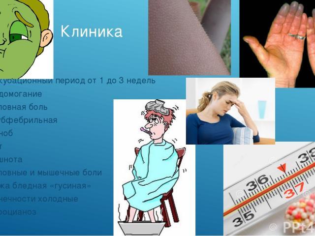 Клиника Инкубационный период от 1 до 3 недель Недомогание Головная боль t субфебрильная Озноб Пот Тошнота Головные и мышечные боли Кожа бледная «гусиная» Конечности холодные Акроцианоз