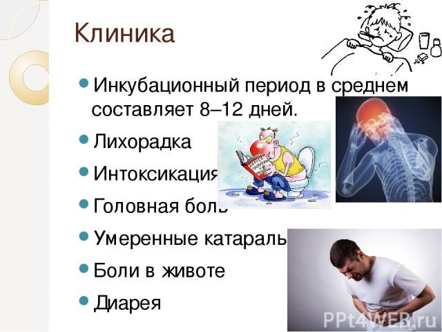 Клиника Инкубационный период в среднем составляет 8–12 дней. Лихорадка Интоксикация Головная боль Умеренные катаральные явления Боли в животе Диарея