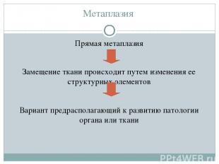 Метаплазия Прямая метаплазия Замещение ткани происходит путем изменения ее струк