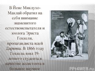 В Йене Миклухо-Маклай обратил на себя внимание знаменитого естествоиспытателя и