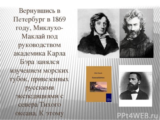 Вернувшись в Петербург в 1869 году, Миклухо-Маклай под руководством академика Карла Бэра занялся изучением морских губок, привезенных русскими экспедициями с севера Тихого океана. К этому времени кругозор молодого исследователя расширился, и он пере…