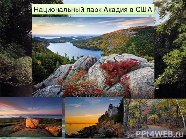 Национальный парк Акадия в США