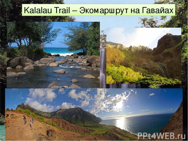 Kalalau Trail – Экомаршрут на Гавайах