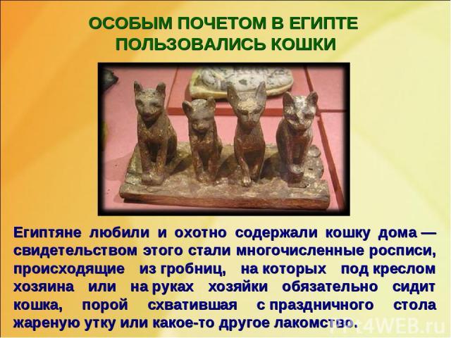ОСОБЫМ ПОЧЕТОМ В ЕГИПТЕ ПОЛЬЗОВАЛИСЬ КОШКИ Египтяне любили и охотно содержали кошку дома— свидетельством этого стали многочисленные росписи, происходящие изгробниц, накоторых подкреслом хозяина или наруках хозяйки обязательно сидит кошка, порой…