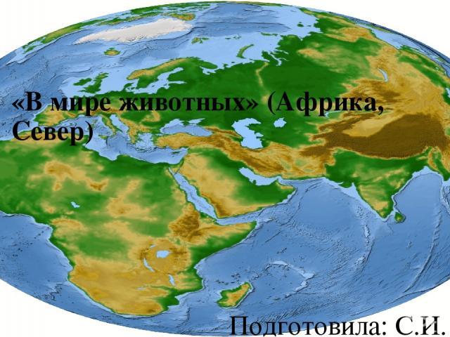 «В мире животных» (Африка, Север) Подготовила: С.И. Арсланова, воспитатель