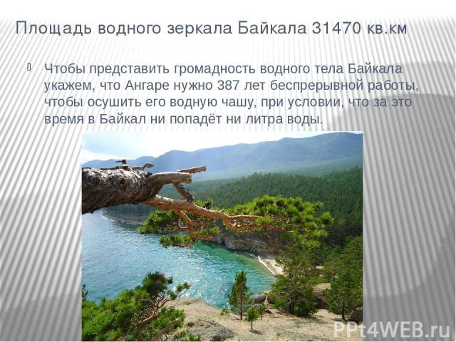 Площадь водного зеркала Байкала 31470 кв.км Чтобы представить громадность водного тела Байкала укажем, что Ангаре нужно 387 лет беспрерывной работы, чтобы осушить его водную чашу, при условии, что за это время в Байкал ни попадёт ни литра воды.