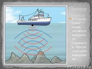 Ультразвукавые волны достигнув поверхности отражаются обратно ,передавая информа