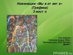 Номинация «Мы в ответе» (Графика) 3 место «Сон манула» Новикова Алина, 12лет, Пр