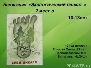 Номинация «Экологический плакат» 2 место «След дикаря» Егорова Ольга, 13 лет, Пр