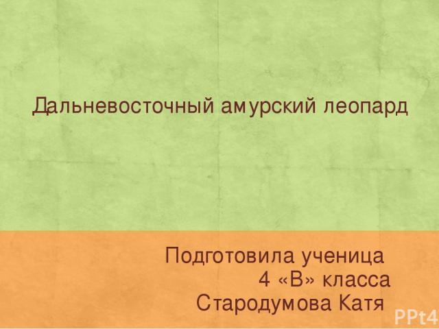 Дальневосточный амурский леопард Подготовила ученица 4 «В» класса Стародумова Катя