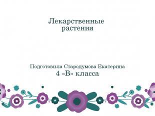 Лекарственные растения Подготовила Стародумова Екатерина 4 «В» класса