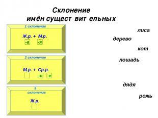 Склонение имён существительных 1 склонение 3 склонение 2 склонение лиса дерево к