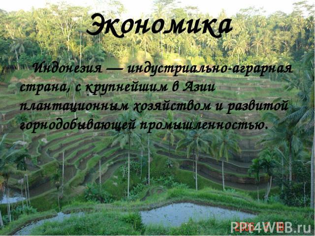 Экономика Индонезия — индустриально-аграрная страна, с крупнейшим в Азии плантационным хозяйством и развитой горнодобывающей промышленностью.