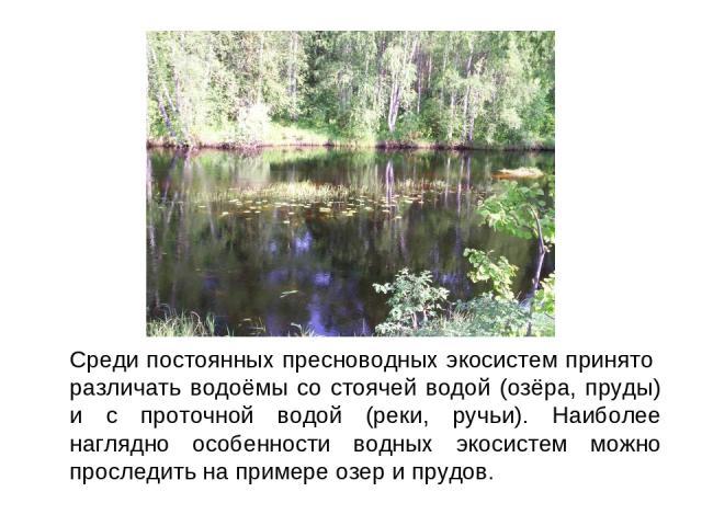 Среди постоянных пресноводных экосистем принято различать водоёмы со стоячей водой (озёра, пруды) и с проточной водой (реки, ручьи). Наиболее наглядно особенности водных экосистем можно проследить на примере озер и прудов.