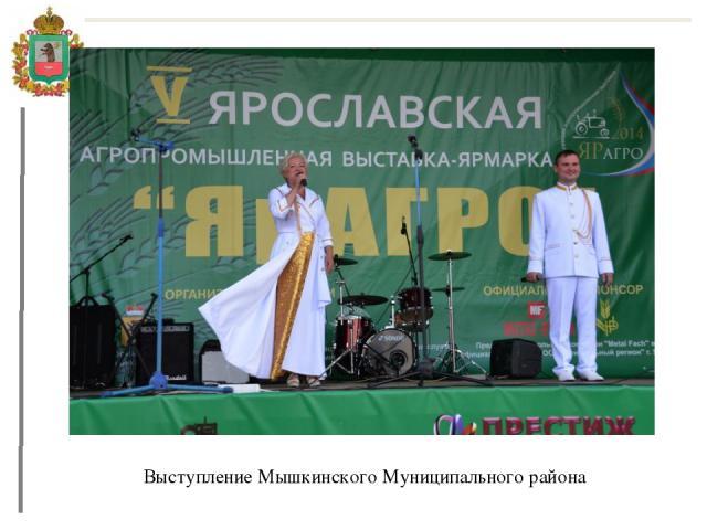 Выступление Мышкинского Муниципального района