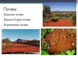 Почвы Красные почвы Красно-бурые почвы Коричневые почвы Серо-коричневые почвы