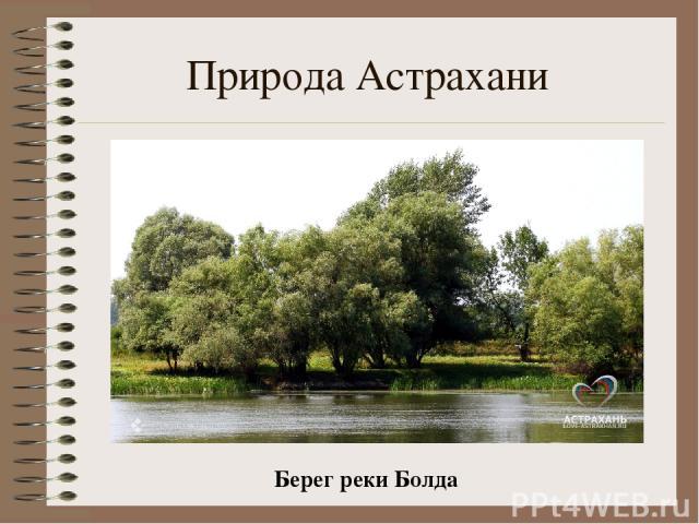 Природа Астрахани Берег реки Болда