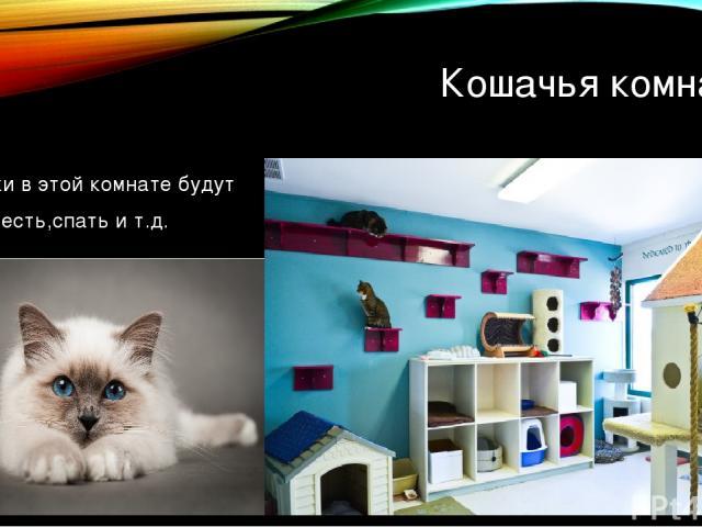 Кошачья комната Котики в этой комнате будут жить,есть,спать и т.д.
