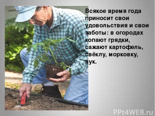 Всякое время года приносит свои удовольствия и свои заботы: в огородах копают гр