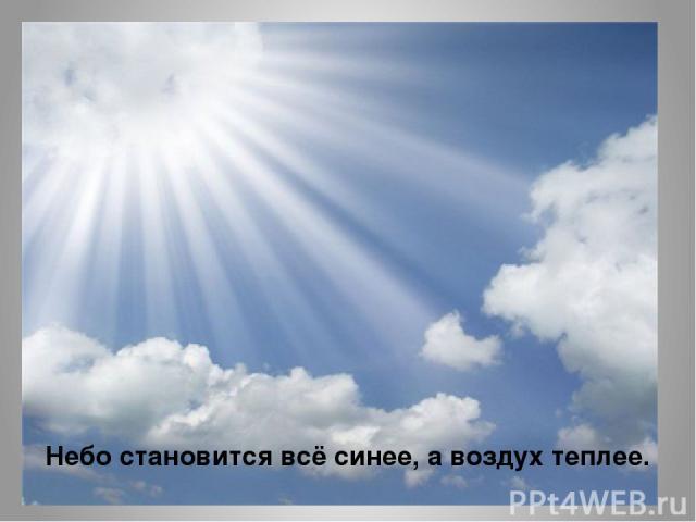 Небо становится всё синее, а воздух теплее.