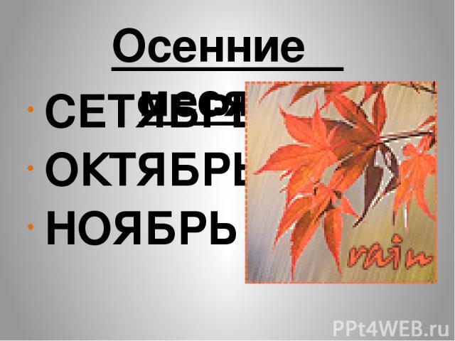 Осенние месяцы СЕТЯБРЬ ОКТЯБРЬ НОЯБРЬ