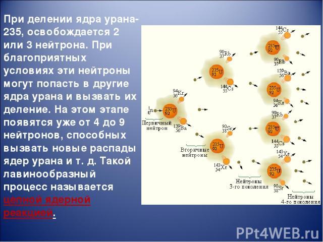 При делении ядра урана-235, освобождается 2 или 3 нейтрона. При благоприятных условиях эти нейтроны могут попасть в другие ядра урана и вызвать их деление. На этом этапе появятся уже от 4 до 9 нейтронов, способных вызвать новые распады ядер урана и …