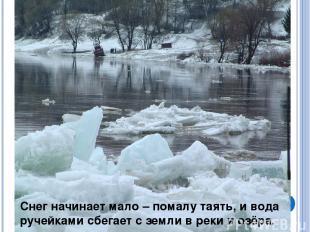 Снег начинает мало – помалу таять, и вода ручейками сбегает с земли в реки и озё