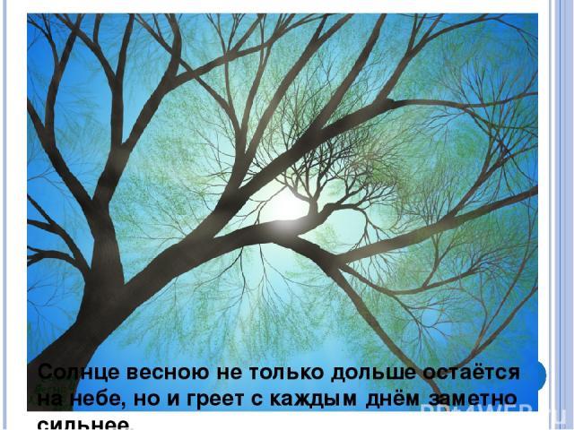 Солнце весною не только дольше остаётся на небе, но и греет с каждым днём заметно сильнее.