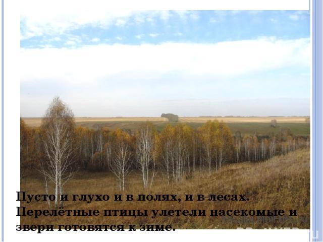 Пусто и глухо и в полях, и в лесах. Перелётные птицы улетели насекомые и звери готовятся к зиме.
