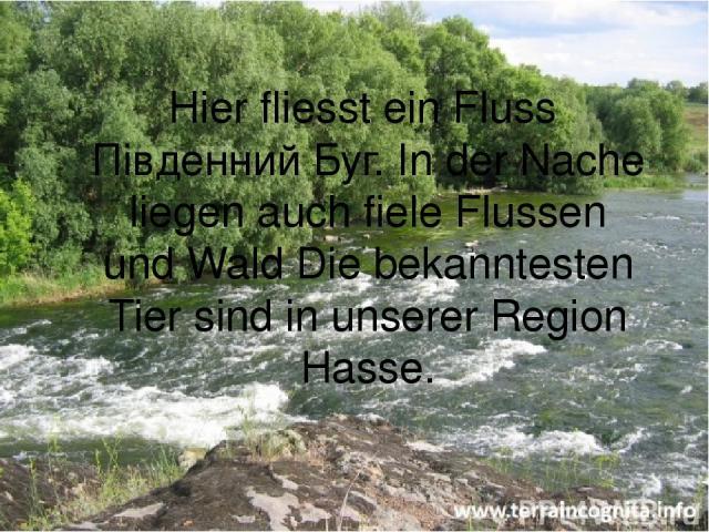Hier fliesst ein Fluss Південний Буг. In der Nache liegen auch fiele Flussen und Wald Die bekanntesten Tier sind in unserer Region Hasse.
