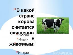 В какой стране корова считается священным животным: России Индии Франции Индии