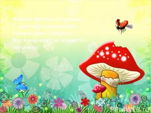 Шапки красные в горошек У грибочков нехороших. Говорят они: «Уйдите! Нас в корзи