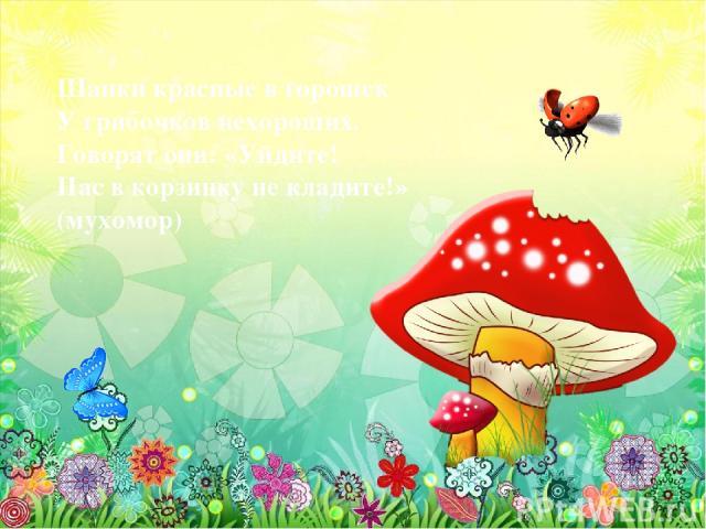 Шапки красные в горошек У грибочков нехороших. Говорят они: «Уйдите! Нас в корзинку не кладите!» (мухомор)